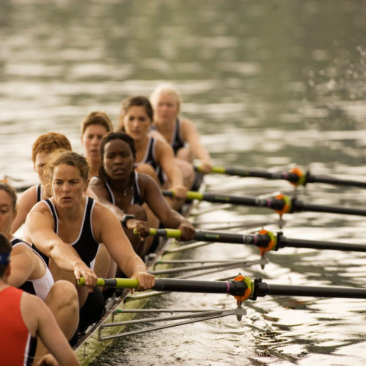 Business Leaders: Row All in the Same Boat